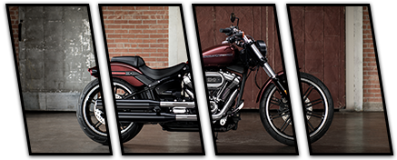 All About Zylstra Harley-Davidson