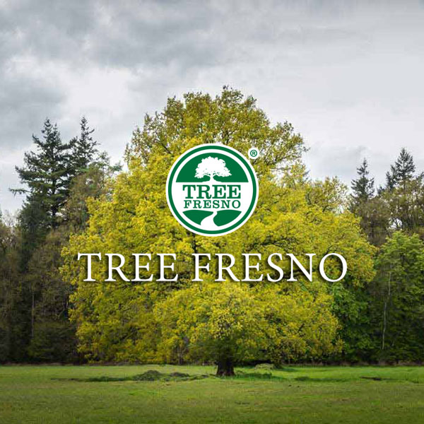 Tree Fresno:Clawson Supports Local Businesses