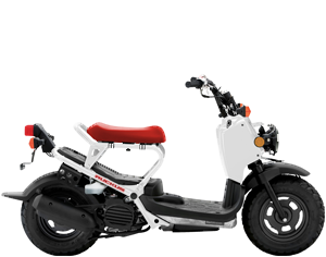 Scooter Inventory at Genthe Honda Powersports