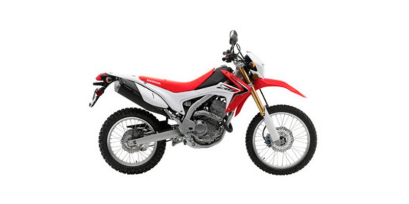 2014 Honda CRF 250L at Sloans Motorcycle ATV, Murfreesboro, TN, 37129