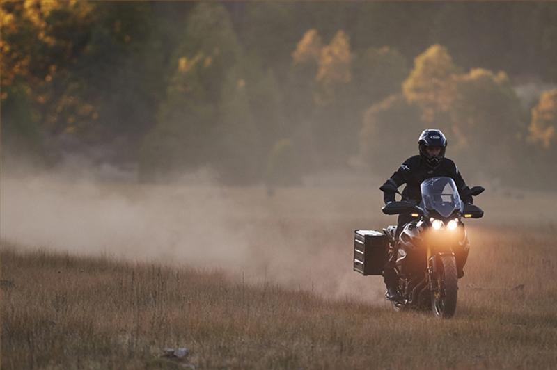 2016 Yamaha Super Ténéré ES at Aces Motorcycles - Fort Collins