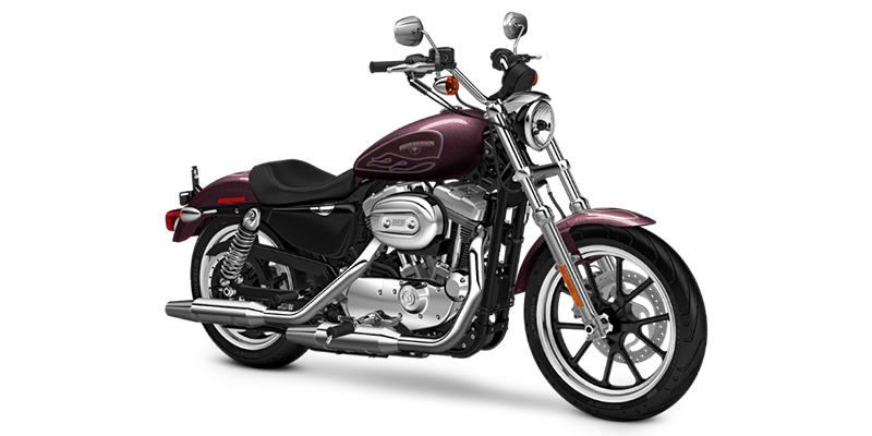 Sportster® SuperLow® at Harley-Davidson® Shop of Winona, Winona, MN 55987