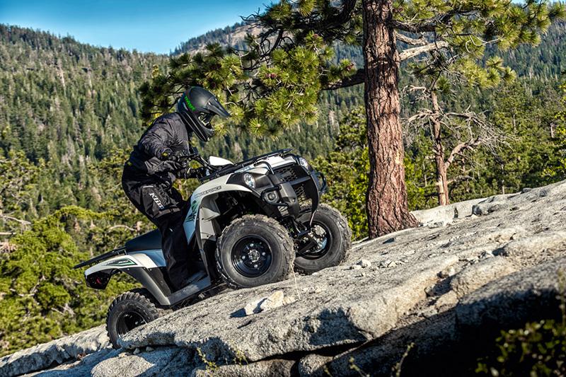 2018 Kawasaki Brute Force 300 at Kawasaki Yamaha of Reno, Reno, NV 89502