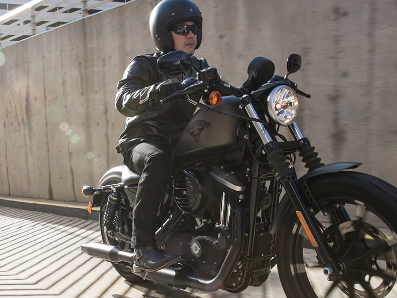 2018 Harley-Davidson Sportster® Iron 883™ at Wolverine Harley-Davidson