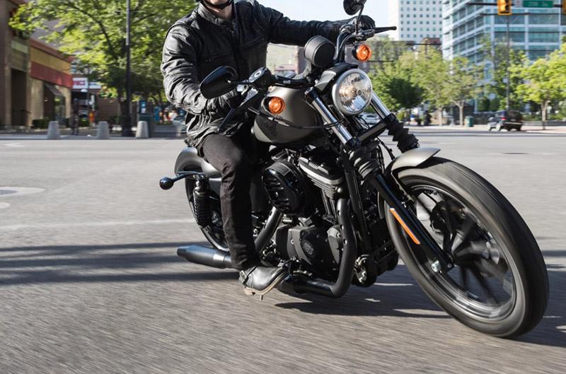 2018 Harley-Davidson Sportster Iron 883 at Harley-Davidson of Fort Wayne, Fort Wayne, IN 46804