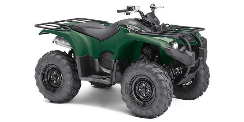 2019 Yamaha Kodiak 450 at Pete's Cycle Co., Severna Park, MD 21146