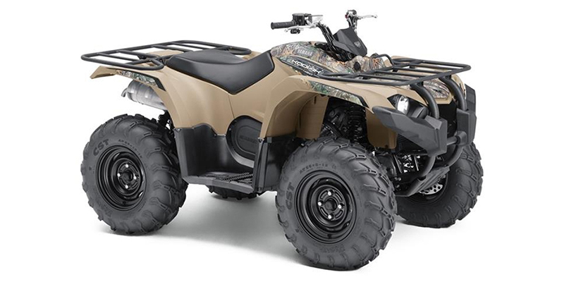 2019 Yamaha Kodiak 450 at Sloan's Motorcycle, Murfreesboro, TN, 37129