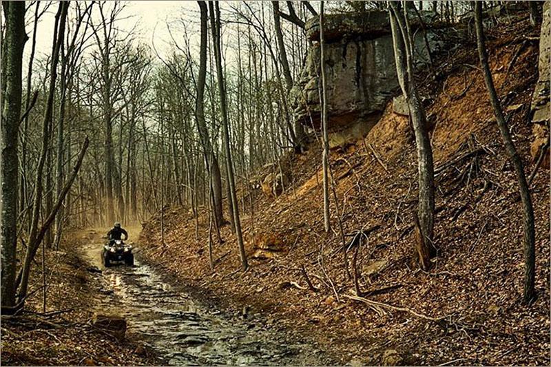 2019 Yamaha Kodiak 450 EPS at Sloan's Motorcycle, Murfreesboro, TN, 37129