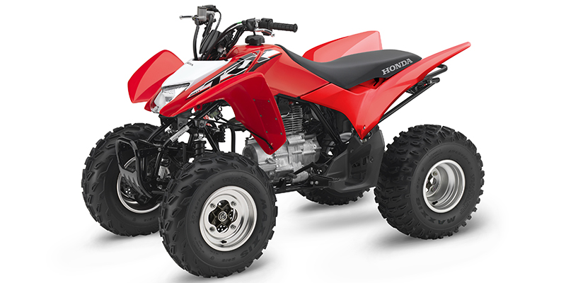 2019 Honda TRX® 250X at Kent Powersports of Austin, Kyle, TX 78640