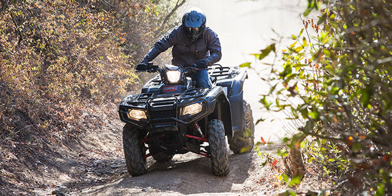 2019 Honda FourTrax Foreman® Rubicon 4x4 Automatic DCT EPS