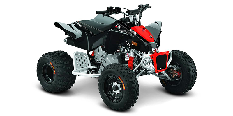 2019 Can-Am DS 90 X at Riderz