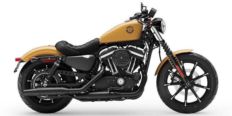 2019 Harley-Davidson Sportster Iron 883 at Bud's Harley-Davidson, Evansville, IN 47715