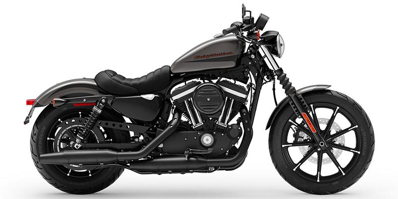2019 Harley-Davidson Sportster Iron 883 at Gasoline Alley Harley-Davidson of Kelowna