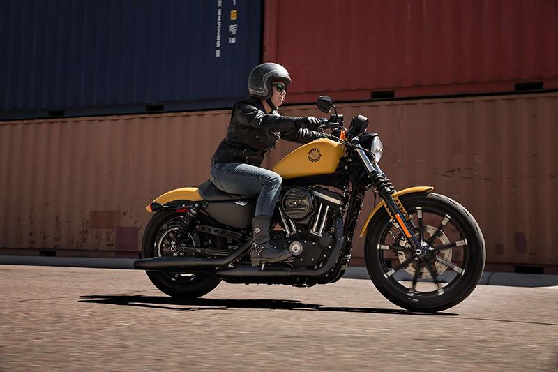 2019 Harley-Davidson Sportster Iron 883 at La Crosse Area Harley-Davidson, Onalaska, WI 54650