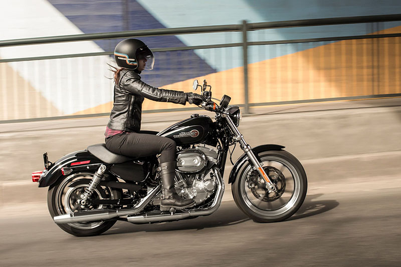 2019 Harley-Davidson Sportster® SuperLow® at All American Harley-Davidson, Hughesville, MD 20637