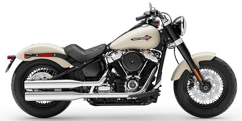 Harley Softail Slim >> 2019 Harley Davidson Softail Slim