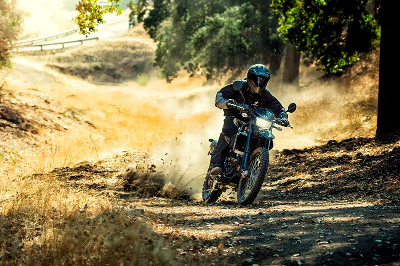 2019 Kawasaki KLX® 250 Camo at Kawasaki Yamaha of Reno, Reno, NV 89502