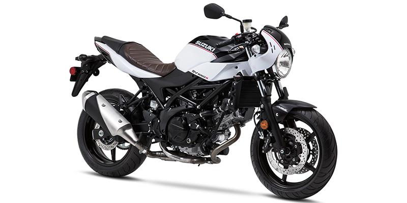 2019 Suzuki SV 650X at Sloan's Motorcycle, Murfreesboro, TN, 37129
