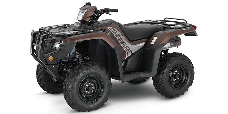 2020 Honda FourTrax Foreman Rubicon EPS 4x4 EPS at Sloans Motorcycle ATV, Murfreesboro, TN, 37129