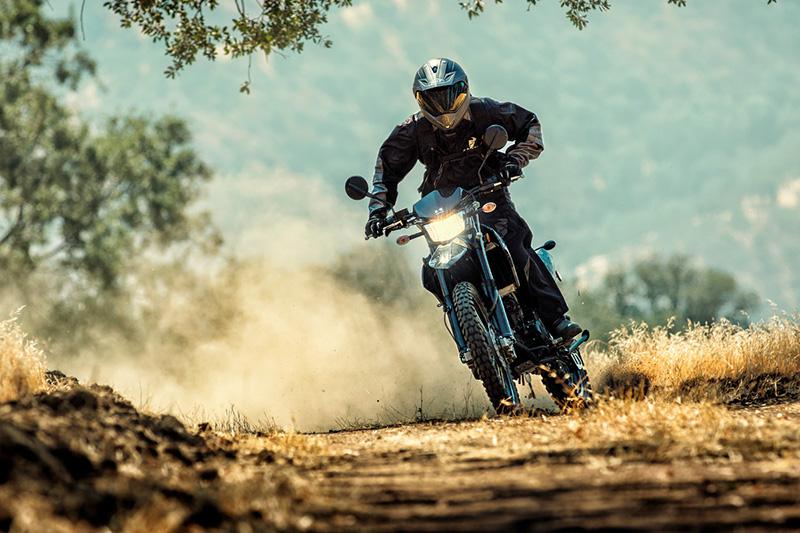 2020 Kawasaki KLX 250 Camo at Sloans Motorcycle ATV, Murfreesboro, TN, 37129