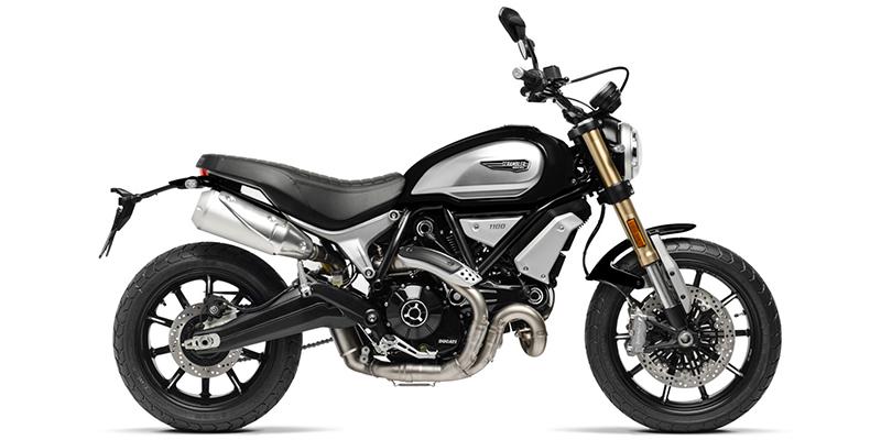 2020 Ducati Scrambler® 1100 at Eurosport Cycle