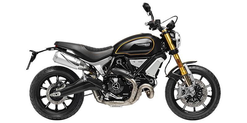 2020 Ducati Scrambler® 1100 Sport at Eurosport Cycle