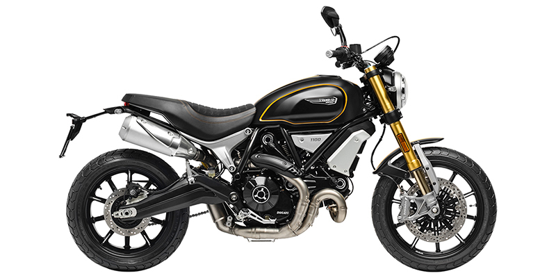 Scrambler® 1100 Sport at Used Bikes Direct