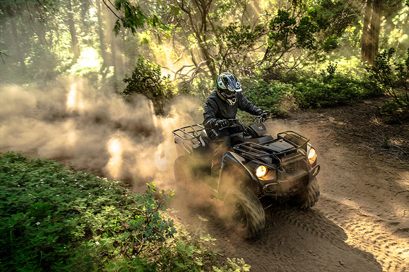 2021 Kawasaki Brute Force® 300 at Kawasaki Yamaha of Reno, Reno, NV 89502