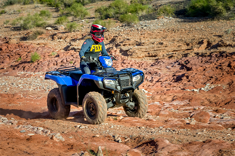 2021 Honda FourTrax Foreman® 4x4 EPS at Sun Sports Cycle & Watercraft, Inc.