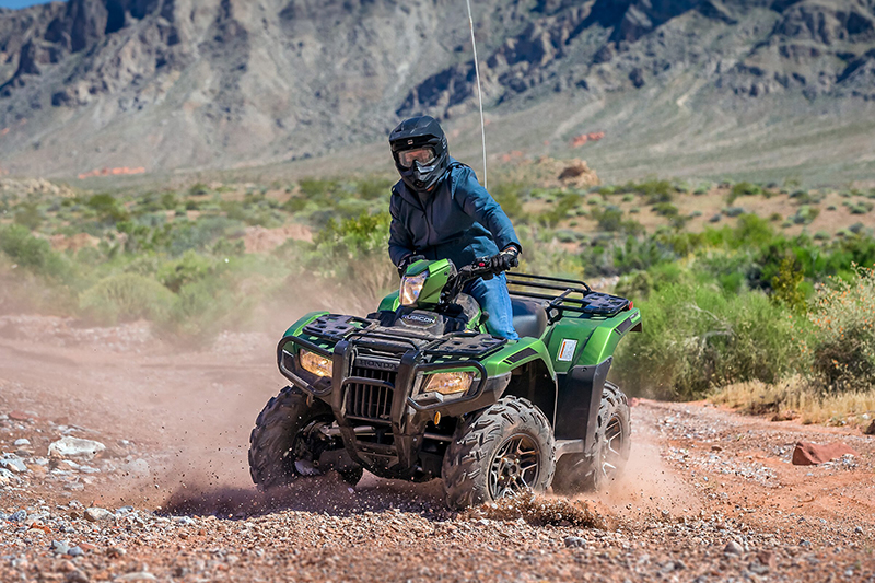 2021 Honda FourTrax Foreman Rubicon 4x4 Automatic DCT EPS Deluxe at Sloans Motorcycle ATV, Murfreesboro, TN, 37129