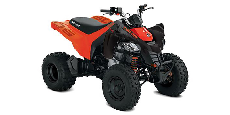 2021 Can-Am™ DS 250 at Jacksonville Powersports, Jacksonville, FL 32225