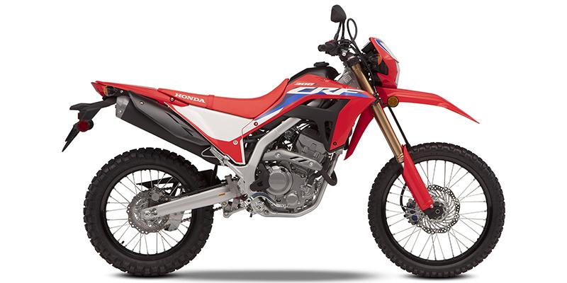 2021 Honda CRF300L ABS 300L ABS at Martin Moto