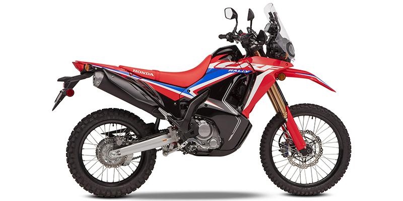 2021 Honda CRF 300L Rally ABS at Sloans Motorcycle ATV, Murfreesboro, TN, 37129