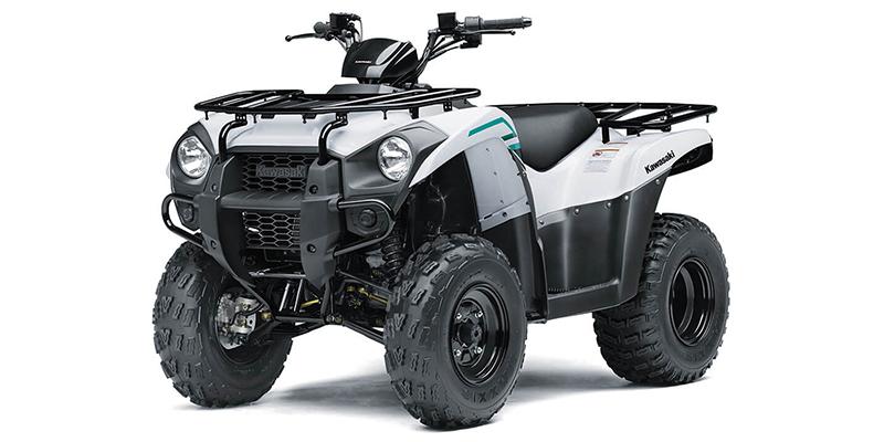 2022 Kawasaki Brute Force 300 at Dale's Fun Center, Victoria, TX 77904