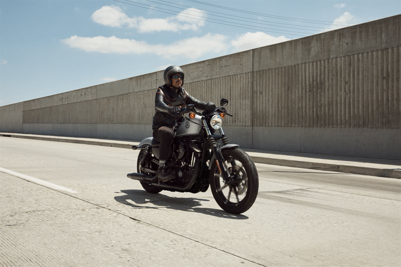 2020 Harley-Davidson Sportster Iron 883 at #1 Cycle Center Harley-Davidson