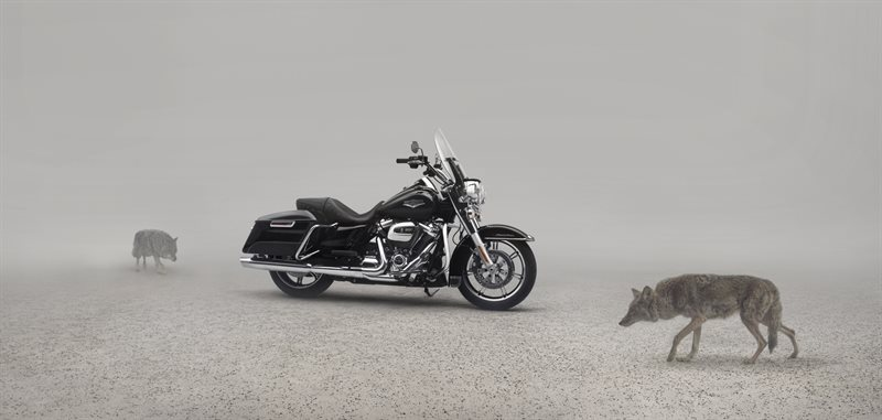 2020 Harley-Davidson Touring Road King at Destination Harley-Davidson®, Tacoma, WA 98424