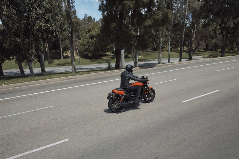 2020 Harley-Davidson Street Street Rod at Bumpus H-D of Murfreesboro