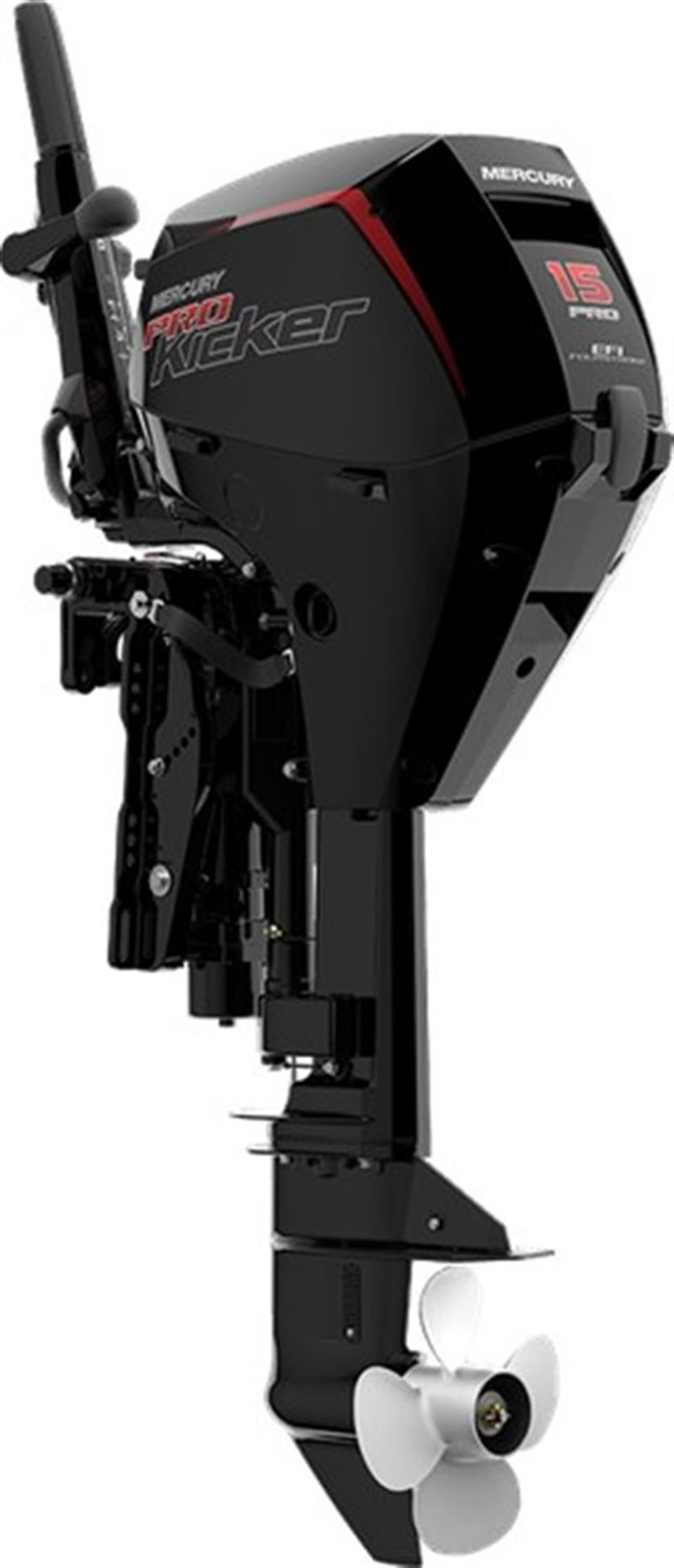 2020 Mercury Outboard FourStroke 15-20 hp 15 EFI at DT Powersports & Marine