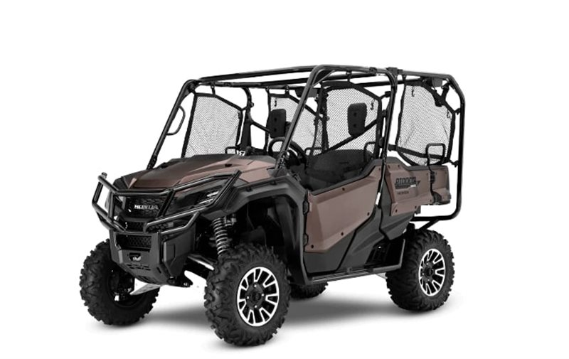 Pioneer 1000-5 Limited Edition at Interstate Honda