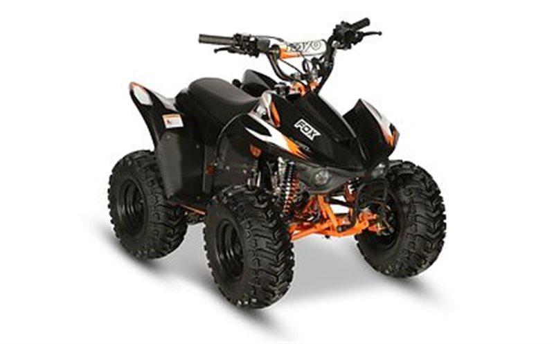 2020 Kayo FOX 70 at Sloans Motorcycle ATV, Murfreesboro, TN, 37129