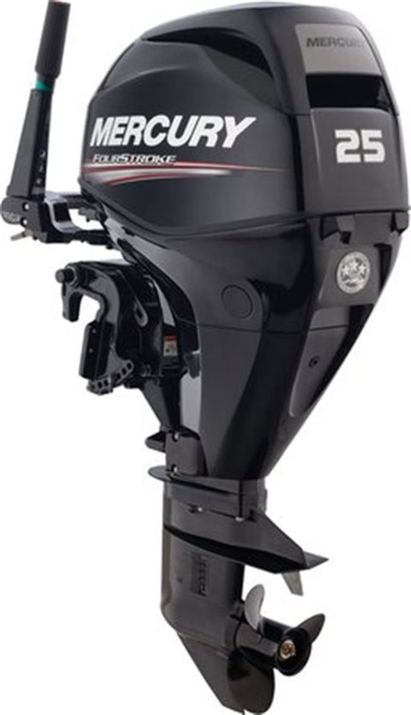 2021 Mercury Outboard FourStroke 25-30 hp 25 hp EFI at Pharo Marine, Waunakee, WI 53597