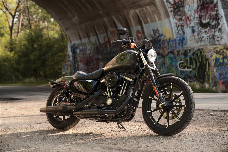2021 Harley-Davidson Cruiser XL 883N Iron 883 at Harley-Davidson of Dothan