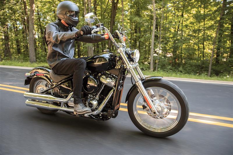 2021 Harley-Davidson Cruiser FXST Softail Standard at Lima Harley-Davidson