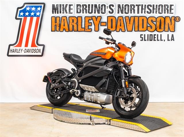 2020 Harley-Davidson LIVEWIRE ELW at Mike Bruno's Northshore Harley-Davidson