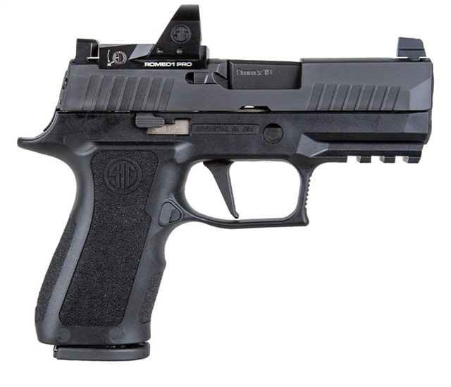 2020 Sig Sauer P320 at Harsh Outdoors, Eaton, CO 80615