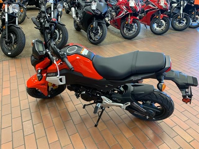 2020 Honda Grom Base at Mungenast Motorsports, St. Louis, MO 63123