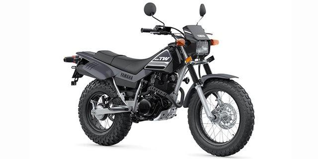 2022 Yamaha TW 200 at Arkport Cycles