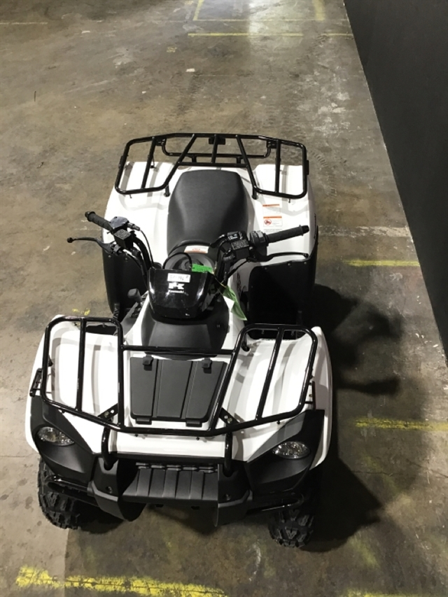 2021 Kawasaki Brute Force 300 at Sloans Motorcycle ATV, Murfreesboro, TN, 37129