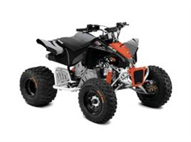 2019 Can-Am DS 90 X at Seminole PowerSports North, Eustis, FL 32726