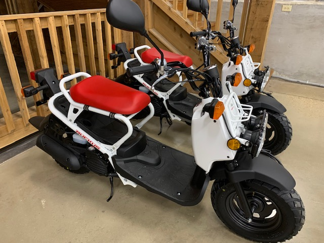 2020 Honda Ruckus Base at Got Gear Motorsports